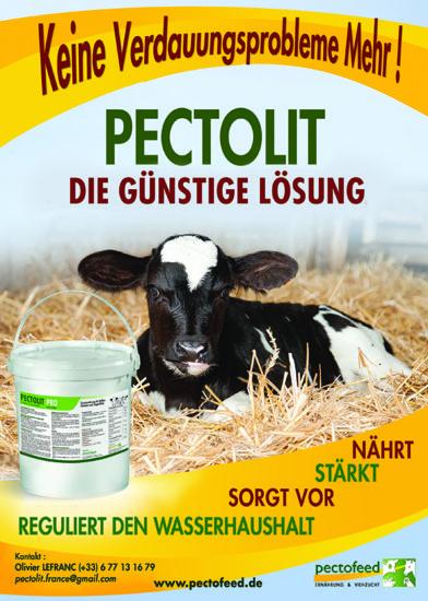 Pectolit